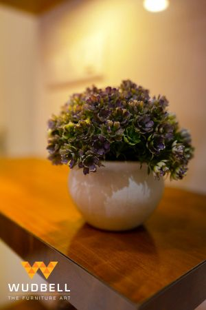 A chic miniature pot with indoor plant