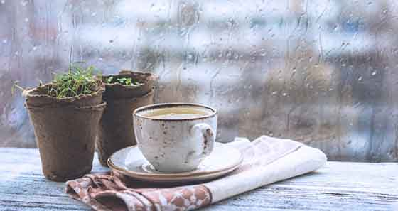 https://www.wudbell.com/wp-content/uploads/2020/07/rainy-season-tips-enjoy-at-home-1000x530-1.jpg